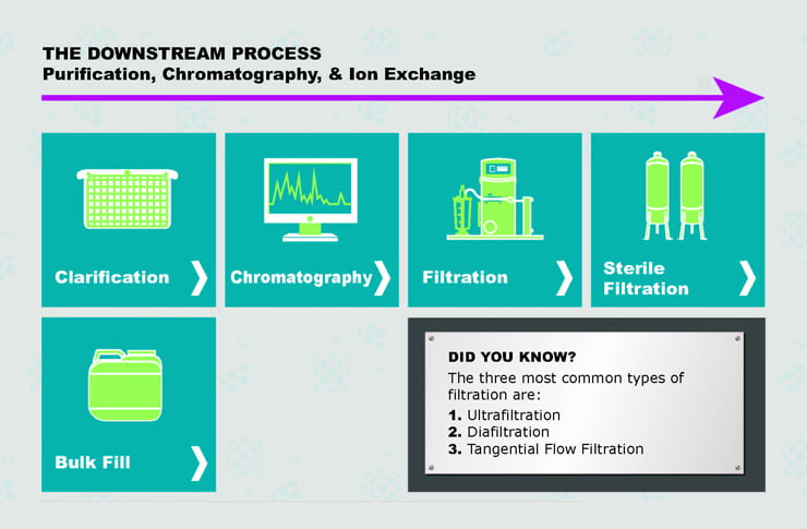 downstream processing