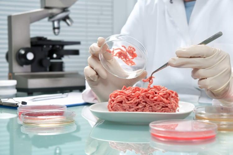 lab meat